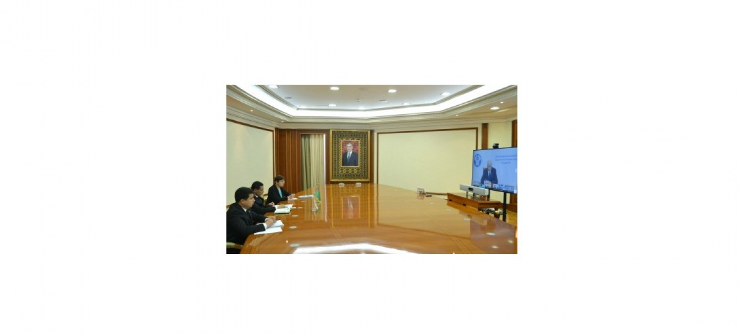 A REGULAR MEETING OF THE CIS ECONOMIC COUNCIL WAS HELD IN VIDEO CONFERENCING FORMAT